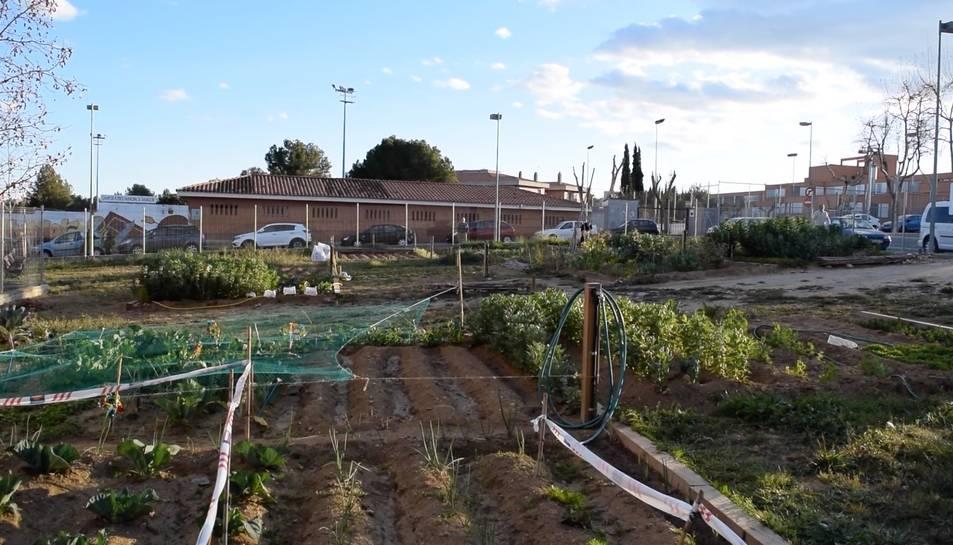 Els horts urbans municipals, una bona manera de donar una nova utilitat als solars municipals buits
