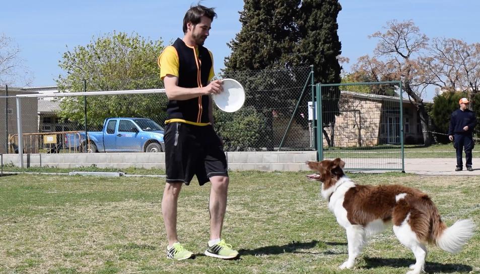 Tarragona acull un campionat deDogfrisbeepuntuable per als europeus