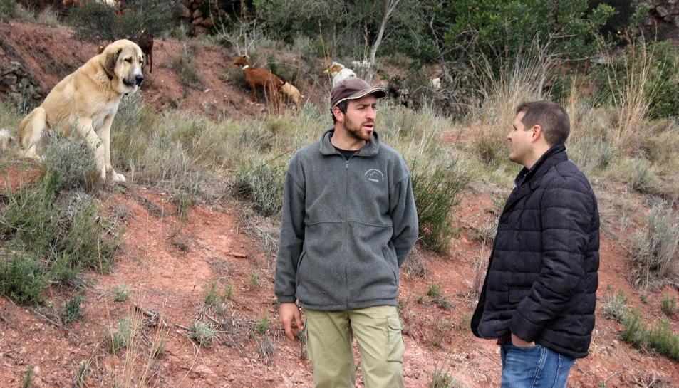 Pla americà de David Arenas, ramader (a l'esquerra), i de Robert Figueras, alcalde d'Alcover, mentre algunes cabres pasturen, a prop seu, per una franja protectora de la urbanització Mas Gasol d'Alcover. Imatge del 26 de febrer de 2016