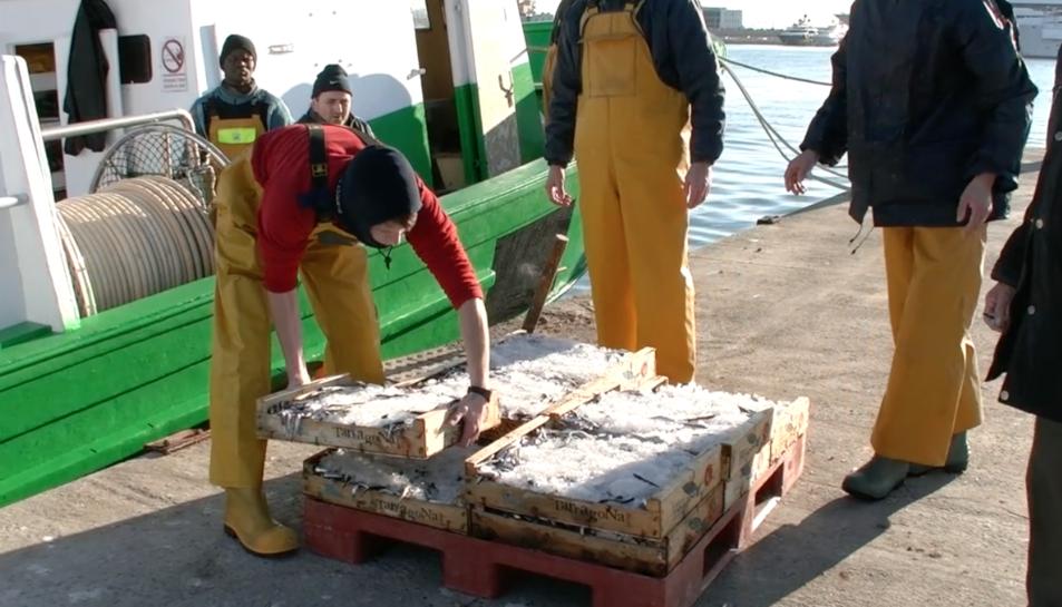 L'entitat Peix Blau s'encarrega de promocionar la marca del peix del mediterrani que es pesca a Tarragona, Cambrils i l'Ametlla de Mar.