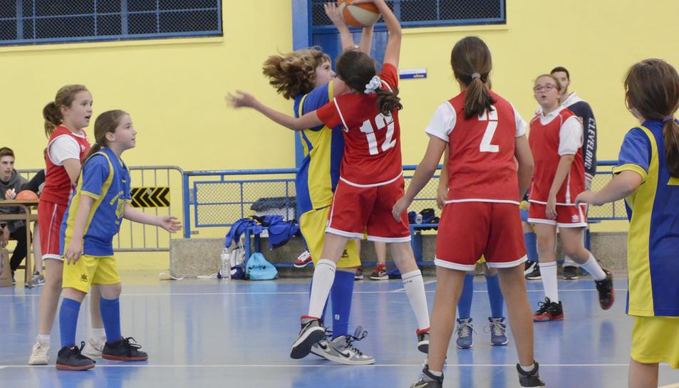 850 joves esportistes participen a les XII Hores de Minibàsquet La Salle