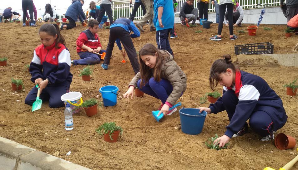Més de 500 infants celebren el Dia de l'Arbre a l'Hospitalet de l'Infant