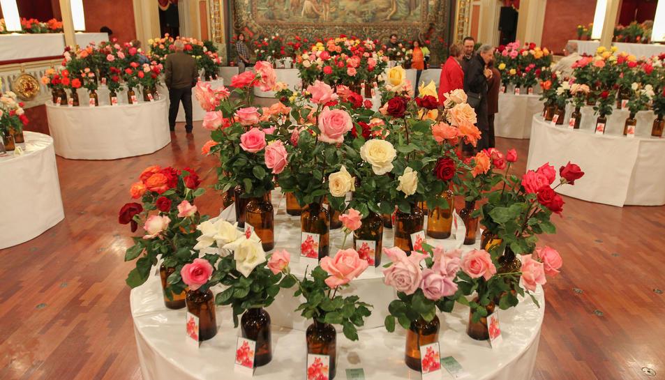 El Teatre Bartrina i el Centre de Lectura s'omplen de roses