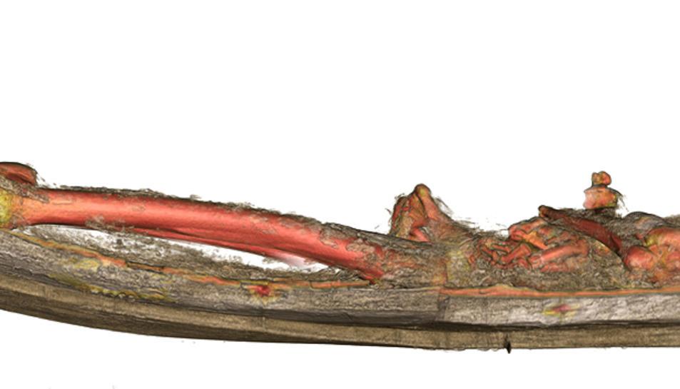 Secció lateral segons la tomografia computada de les restes del rei Pere el Gran dins del sepulcre.
