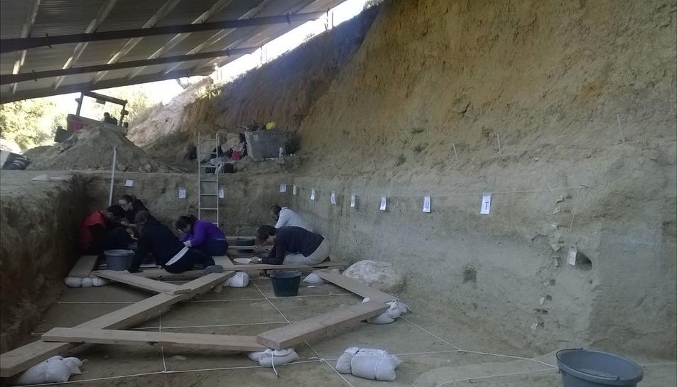 Les excavacions de la Boella descobreixen noves restes d'hipopòtam
