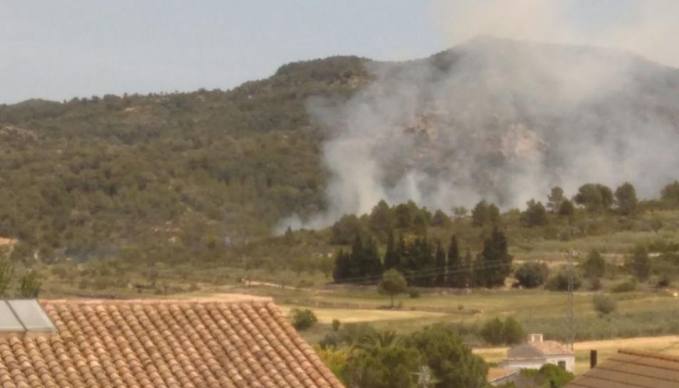 Un incendi crema 0,9 hectàrees a El Pinell de Brai