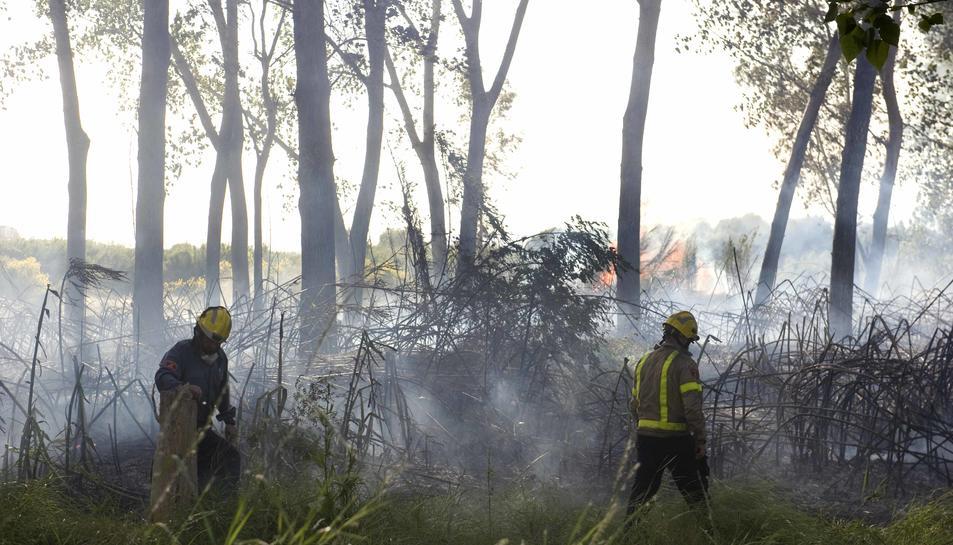 Controlat l'incendi de Sant Salvador