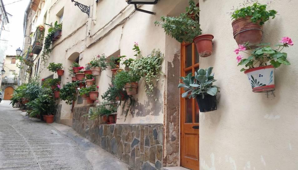 Porrera s'omple de flors i turistes pel concurs de balcons i portals