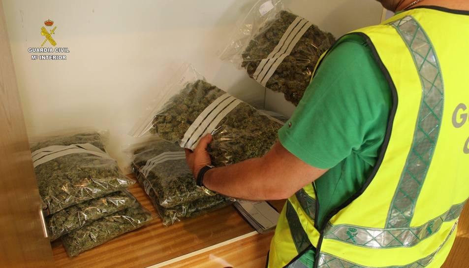 Dos detinguts a Calafell per cultivar marihuana, després que els veïns alertessin de la forta olor
