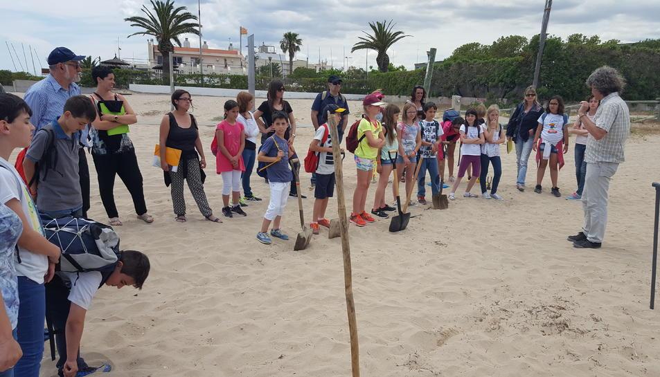 Encuentro de escuelas verdes en Torredembarra