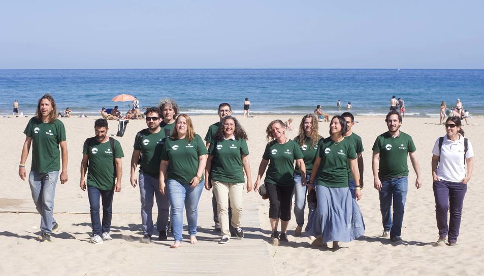 Dues tortugues supervivents de la platja Llarga s'alliberaran al juny