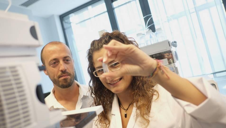 Descobreixen una nova font d'energia al nucli de les cèl·lules