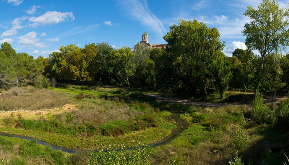 Imatge panoràmica de la zona fluvial de l'albereda.