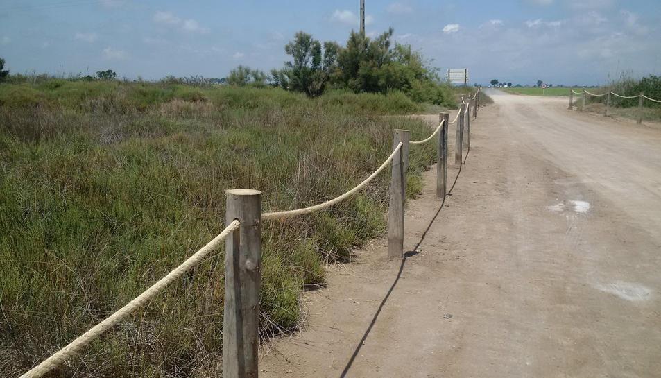 Proteccions instal·lades al Serrallo, a Sant Jaume d'Enveja, al Parc Natural del delta de l'Ebre, aquest juliol de 2016