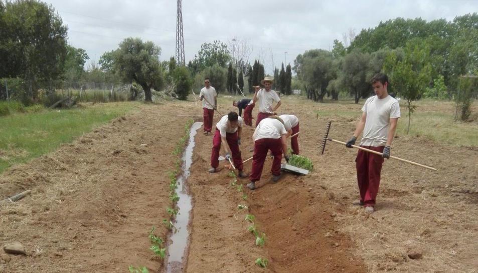 Onze joves s'especialitzen en agricultura ecològica gràcies a la Casa d'Oficis