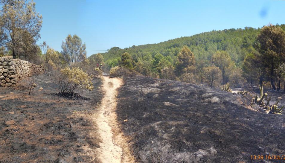 Agents Rurals conclouen que l'incendi de Sant Ramon va ser intencionat