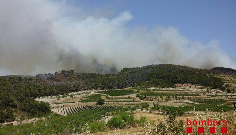 Un incendi crema a Rocallaura