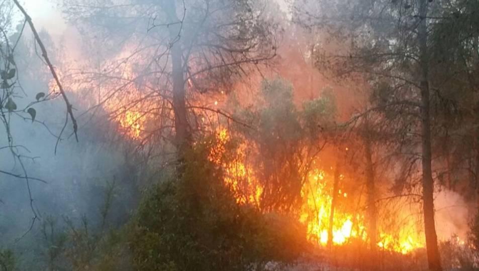 Incendi de matolls a Sant Ramon