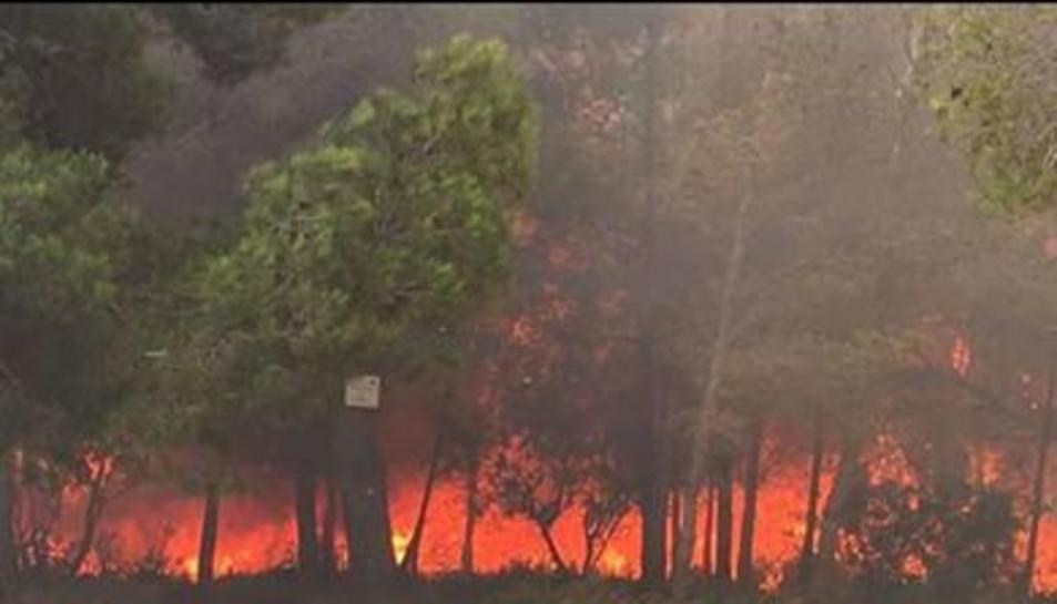 L'incendi dels Pallaresos obliga a desallotjar veïns de Mas dels Frares