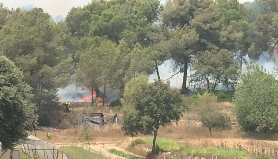 Imatge del foc que afecta a la zona del Mas dels Frares