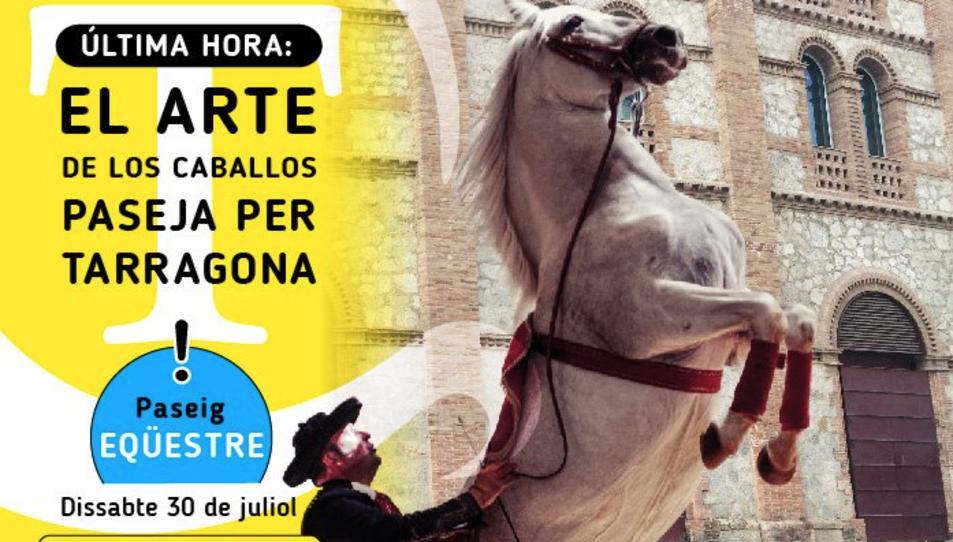 Els cavalls de l'espectacle El Arte de los Caballos Andaluces passegen per Tarragona