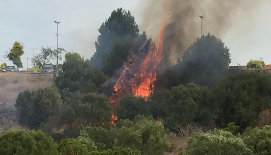 Crema un solar al costat del CN Tàrraco