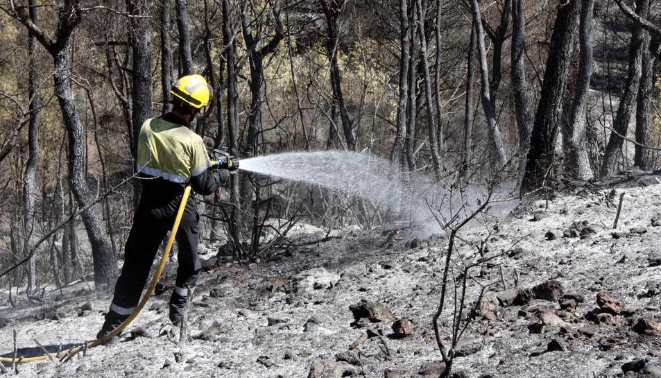 Detall d'un bomber ruixant una zona cremada de l'incendi de la Pobla de Montornès. 6 d'agost de 2016
