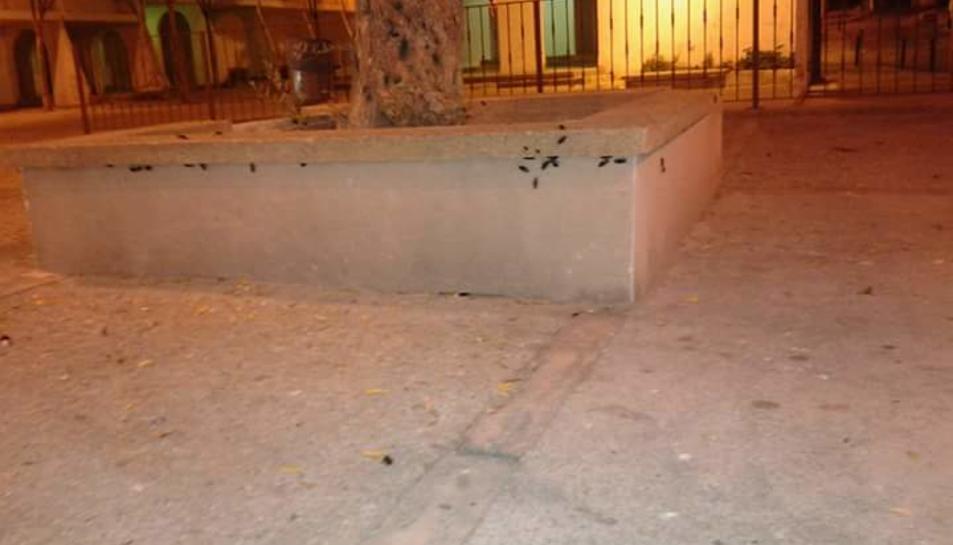 Els veïns de les '600 viviendas' de Constantí denuncien que hi ha plaga de paneroles