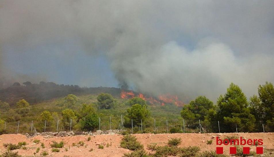 Imatge de l'incendi forestal que afecta a una zona propera a la urbanització Mas Mel a Calafell aquest 22 d'agost del 2016. Pla general