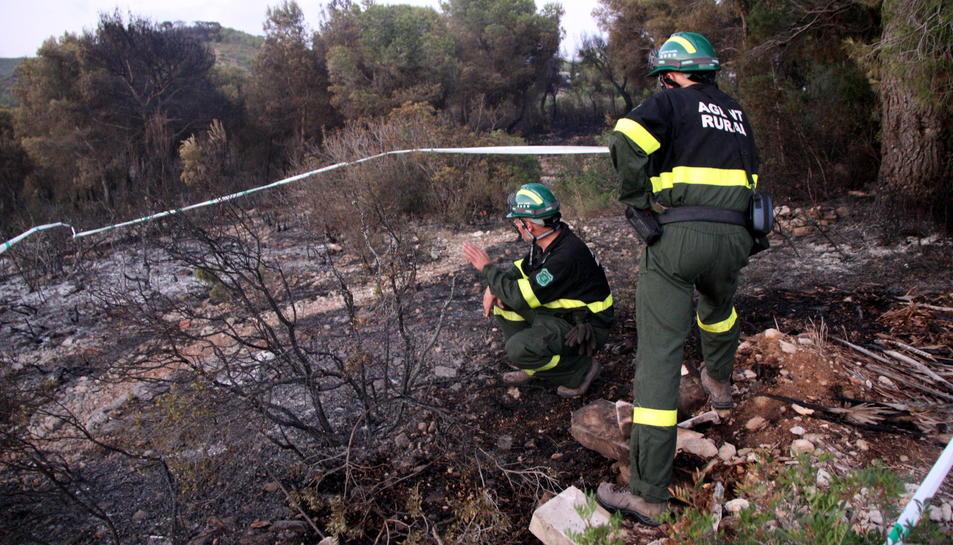 Pla obert de dos efectius dels Agents Rurals investigant sobre el terreny un dels punts on s'hauria iniciat l'incendi. Imatge del 22 d'agost del 2016