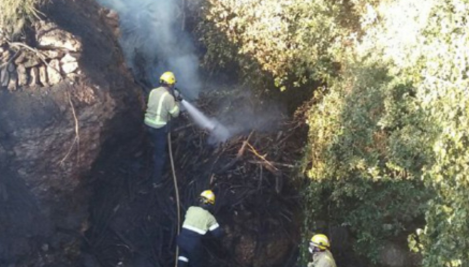 Un foc crema en un barranc de difícil accés a Alcover