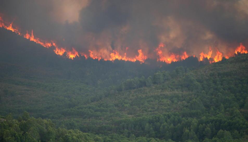 Imatge d'arxiu de l'incendi que va cremar part del terme de Tivissa el 2014.