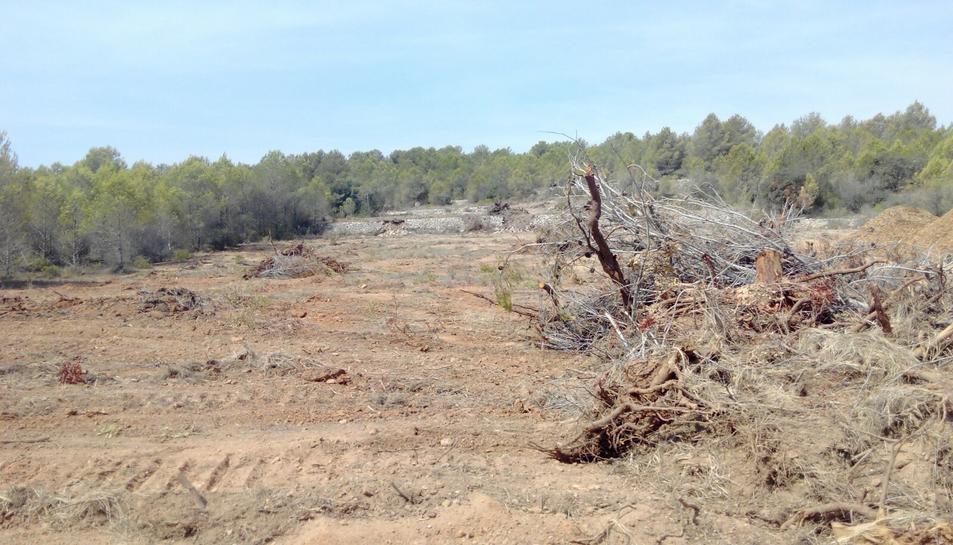 Imatge actual dels moviments terres que s'han realitzat a la zona.