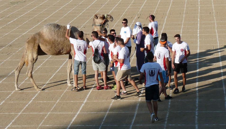 Els integrants de l'equip amb el camell.