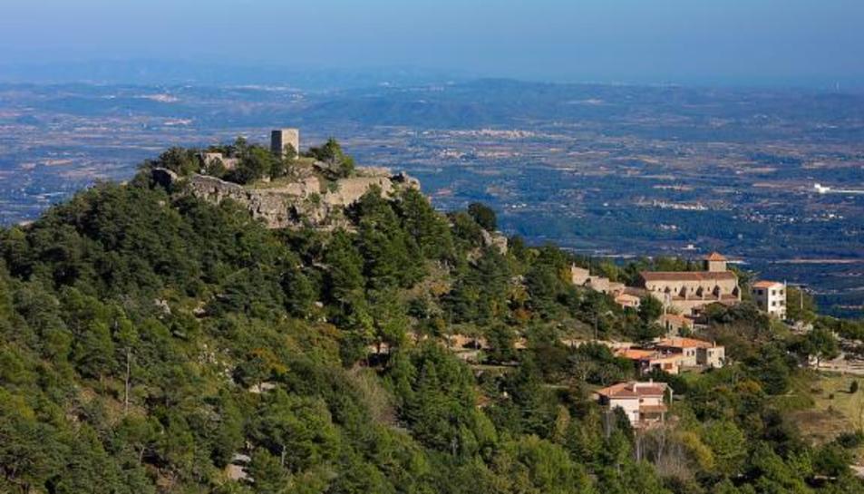 El Castell de l'Albiol vist des de l'aire.