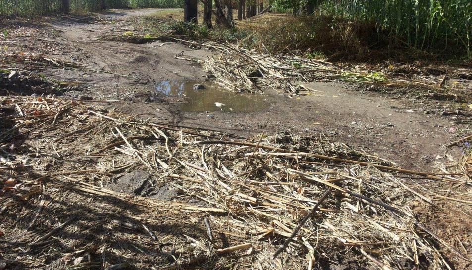 Una de les imatges de l'estat actual de la zona que ha fet públiques CDC.
