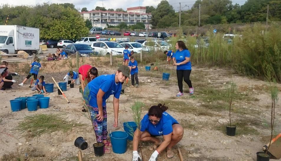 Els voluntaris han treballat durant tot el matí de diumenge.