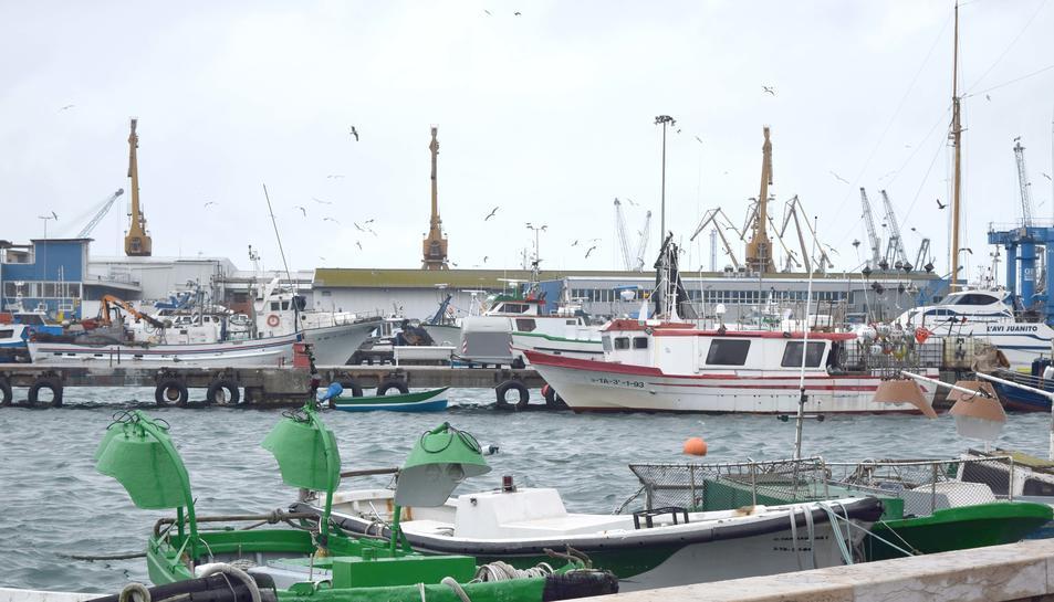 Imatge d'arxiu de les barques de pescadors al Serrallo.
