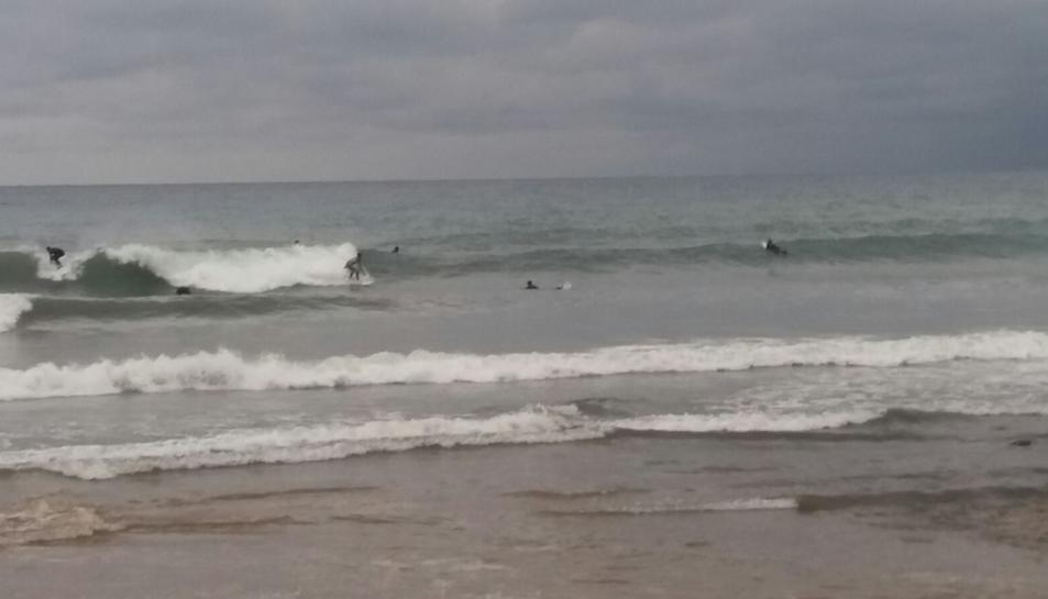 Els surfistes a l'aigua