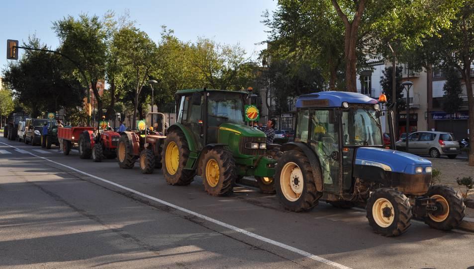 Els tractors s'han trobat al Passeig Mata de Reus a les 10 del matí.