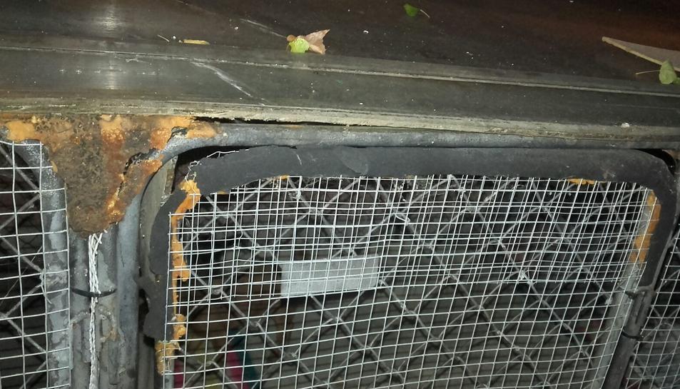 Els lladres van trencar la porta de la gàbia dels animals.