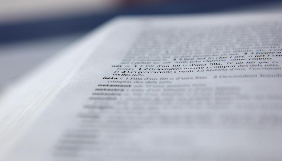Entrada 'nét' i 'néta', paraules amb accent diacrític, en una pàgina del 'Diccionari de la llengua catalana' de l'Institut d'Estudis Catalans