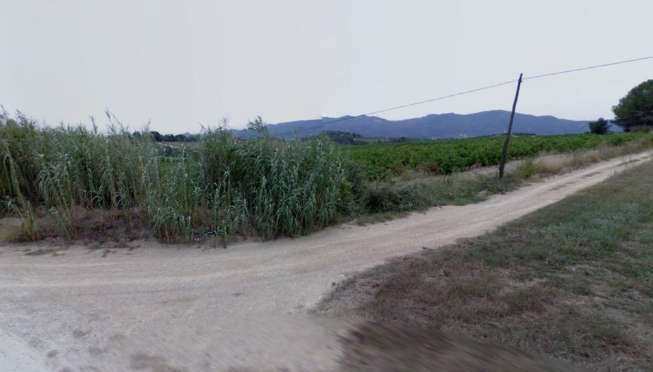 Un dels camins propers a la riera de Can F
