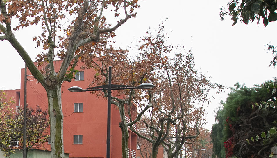 El carrer de la Vicaria a la urbanització Pàmies.