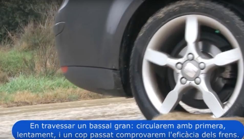 Imatge d'un vídeo que ha publicat el Servei Català de Trànsit amb consells de conducció segura en cas de pluja.
