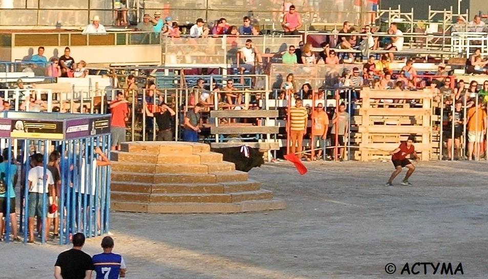 La desencaixonada del bou cerril denunciada per Actyma a la Delegació Territorial del Joc i d'Espectacles a les Terres de l'Ebre.