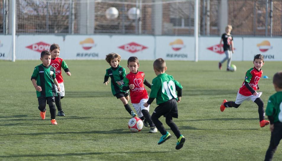 Futbolistes en les categories prebenjamí, benjamí i aleví van gaudir d'una jornada de futbol formatiu.