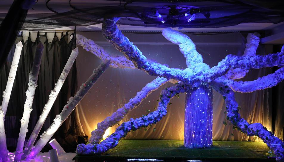 El tronc de l'arbre que és al centre de la instal·lació fa de pantalla on s'hi projecta un 'maping' relacionat amb els diversos elements de la natura.