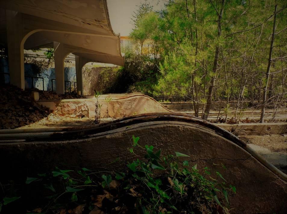 La natura ha ocupat per complert la bolera de la Ciutat Residencial, abandonada des de fa anys, situada darrere la platja Llarga.