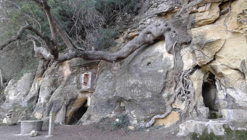 Aspecte que oferia la Font del Garrot ahir diumenge, amb l'arbe que amenaça amb provocar desprendiments a la roca.